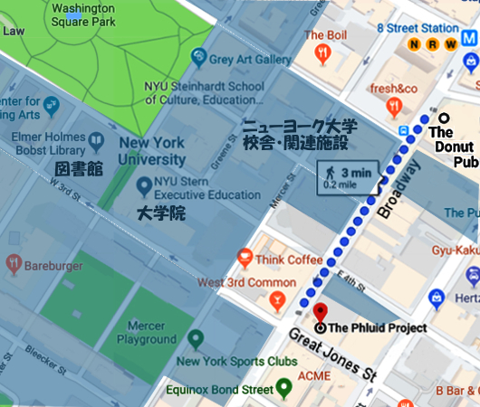 ニューヨーク大学(NYU)キャンパス・エリアの独特の雰囲気_b0007805_21081550.jpg