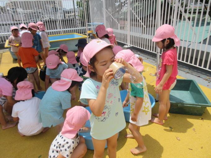 4・5歳 お泊り保育と夕涼み会_b0117125_14264530.jpg