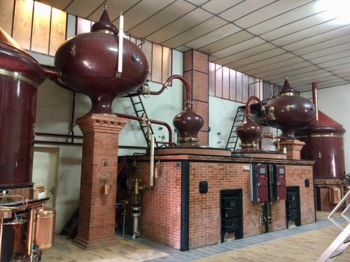 再開封Cognac Château de Montifaud L50と今秋にリリース予定のオリジナルコニャック_d0011635_16311313.jpg