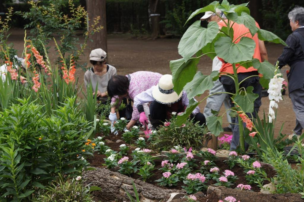 念ずれば 花ひらく ~福岡中央公園を愛し育てる会~_a0107574_22241877.jpg