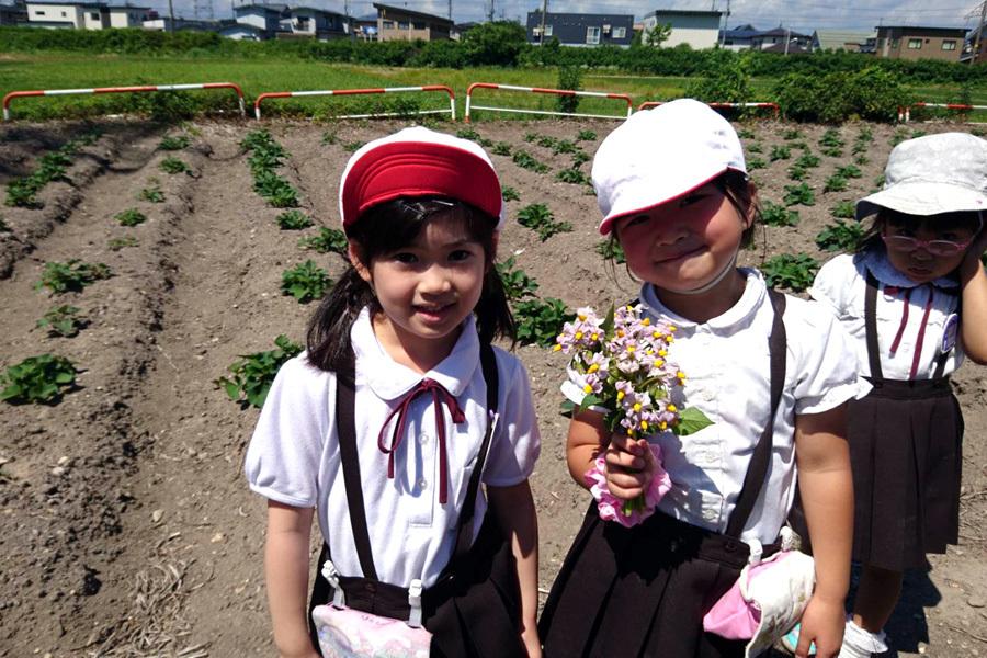 ジャガイモの花を見に行きました_d0353789_15145273.jpg