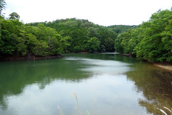 水は満々吉原池_b0145296_15041233.jpg