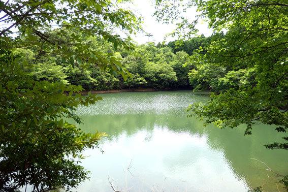 水は満々吉原池_b0145296_15041839.jpg