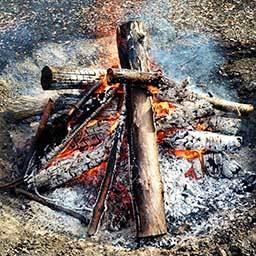 転載: 「焚火の効用」  _d0231432_20304279.jpg
