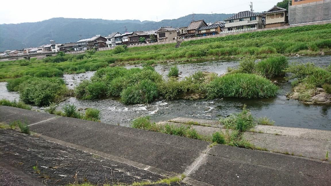 近隣河川の情報です..._c0266737_15402734.jpg