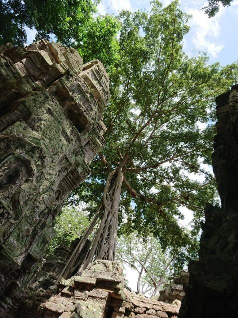 旅行3日~4日目はベトナムからカンボジアへ_f0323446_01211302.jpg