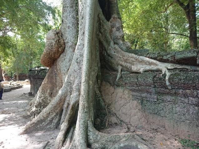 旅行3日~4日目はベトナムからカンボジアへ_f0323446_01211363.jpg