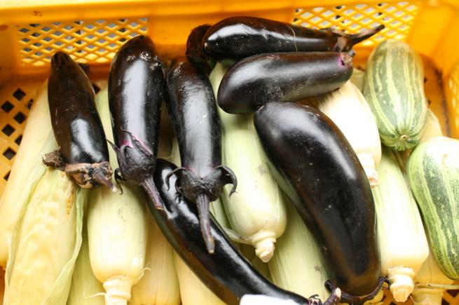 野菜の保存_c0331864_17593357.jpg