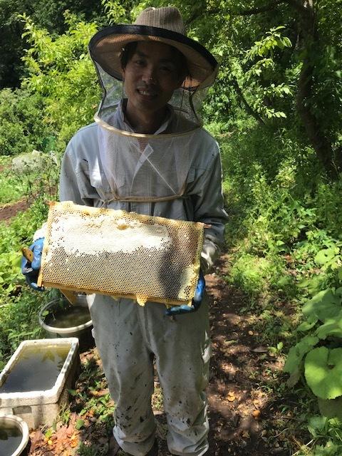 こだわり食材「イッピン」店頭に六国見山産の蜂蜜6・28_c0014967_16423008.jpg