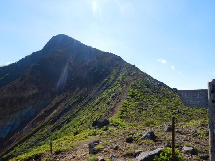 バンダイクワガタ咲く磐梯山へ ~ 2019年6月26日_f0170180_15481035.jpg