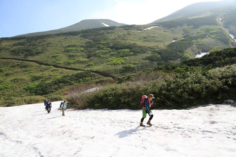 富良野岳、三峰山と上富良野岳、2019.6.24ー同行者からの写真ー_f0138096_23425656.jpg