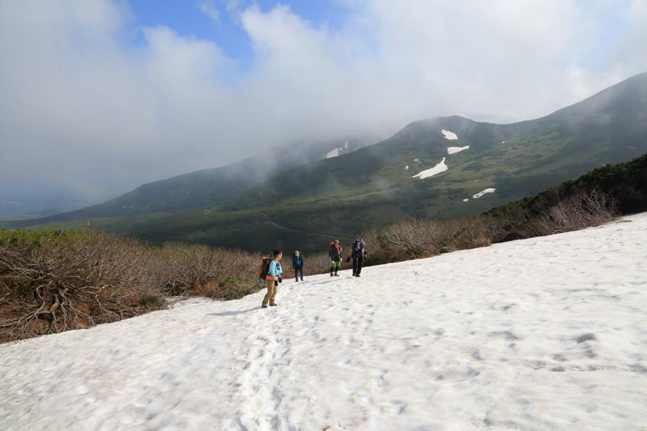 富良野岳、三峰山と上富良野岳、2019.6.24ー同行者からの写真ー_f0138096_23431456.jpg
