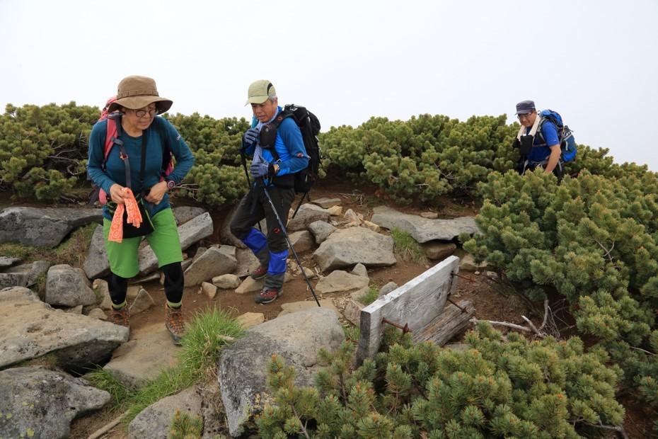 富良野岳、三峰山と上富良野岳、2019.6.24ー同行者からの写真ー_f0138096_23440171.jpg