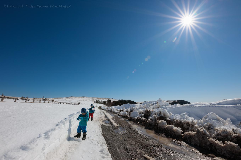 3歳5歳ちびっ子兄弟のスノーハイキング「美ヶ原高原」_c0369219_16380000.jpg