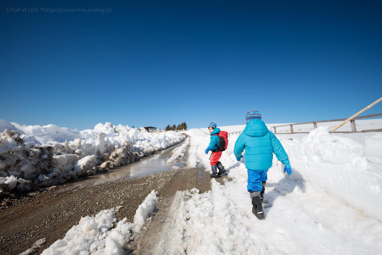 3歳5歳ちびっ子兄弟のスノーハイキング「美ヶ原高原」_c0369219_16432392.jpg