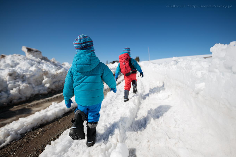 3歳5歳ちびっ子兄弟のスノーハイキング「美ヶ原高原」_c0369219_16472408.jpg
