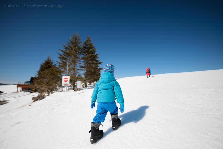 3歳5歳ちびっ子兄弟のスノーハイキング「美ヶ原高原」_c0369219_16485610.jpg