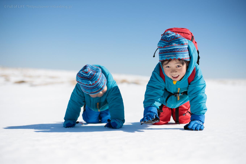 3歳5歳ちびっ子兄弟のスノーハイキング「美ヶ原高原」_c0369219_17095794.jpg