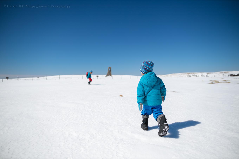 3歳5歳ちびっ子兄弟のスノーハイキング「美ヶ原高原」_c0369219_17180742.jpg