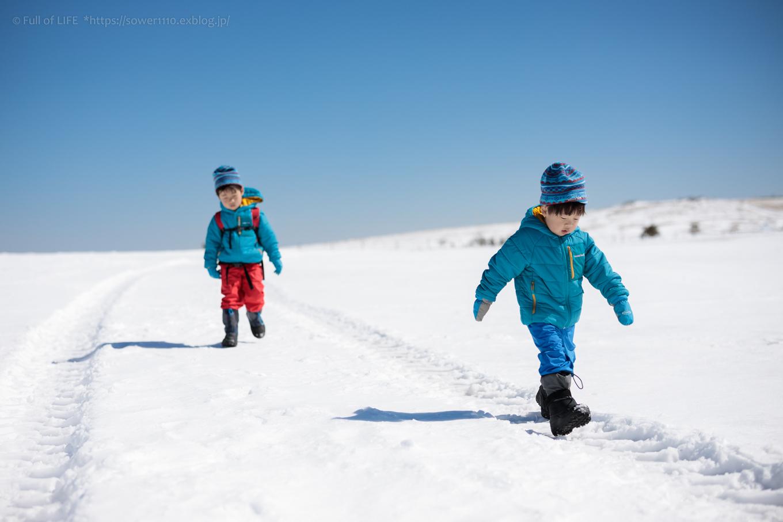 3歳5歳ちびっ子兄弟のスノーハイキング「美ヶ原高原」_c0369219_17520267.jpg