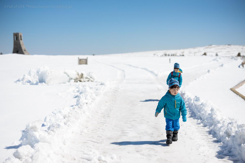 3歳5歳ちびっ子兄弟のスノーハイキング「美ヶ原高原」_c0369219_17535208.jpg