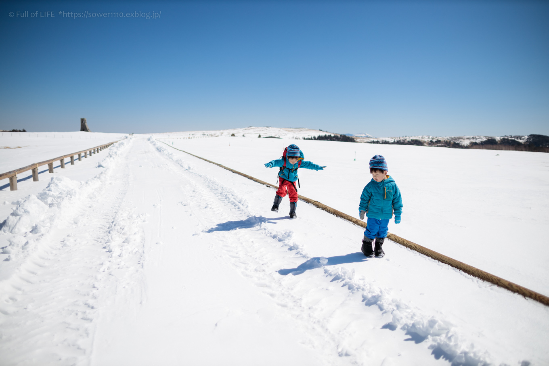 3歳5歳ちびっ子兄弟のスノーハイキング「美ヶ原高原」_c0369219_18091998.jpg