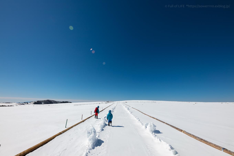 3歳5歳ちびっ子兄弟のスノーハイキング「美ヶ原高原」_c0369219_18162285.jpg