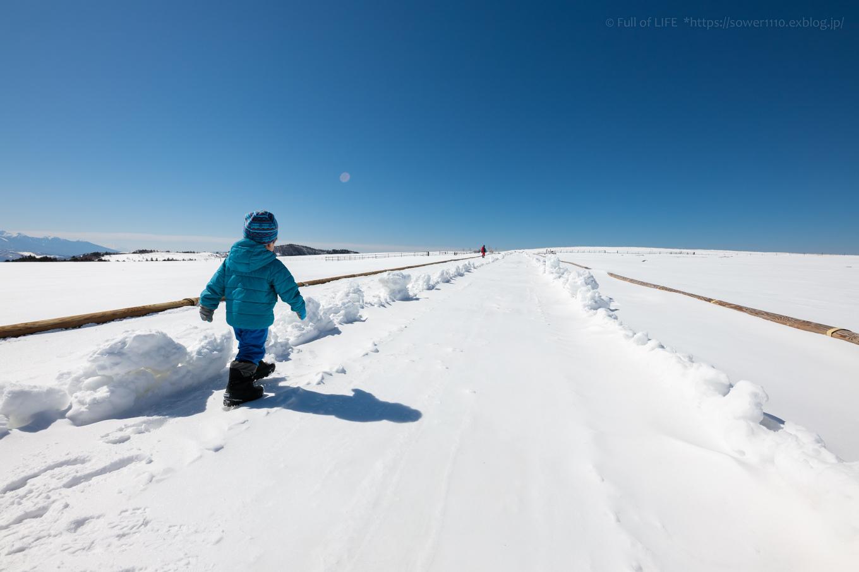 3歳5歳ちびっ子兄弟のスノーハイキング「美ヶ原高原」_c0369219_18180841.jpg