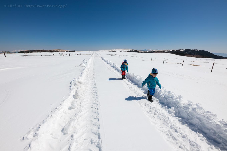 3歳5歳ちびっ子兄弟のスノーハイキング「美ヶ原高原」_c0369219_18221119.jpg