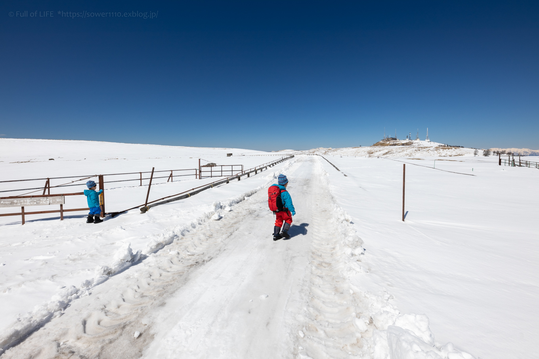 3歳5歳ちびっ子兄弟のスノーハイキング「美ヶ原高原」_c0369219_18282774.jpg