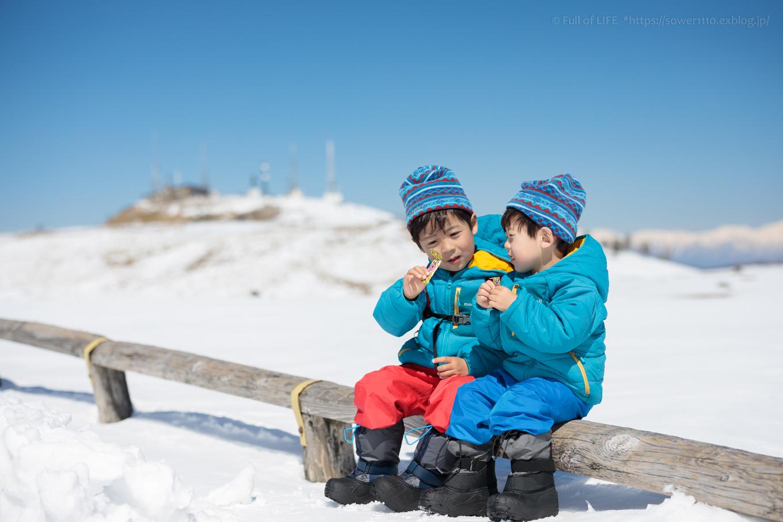 3歳5歳ちびっ子兄弟のスノーハイキング「美ヶ原高原」_c0369219_18384519.jpg
