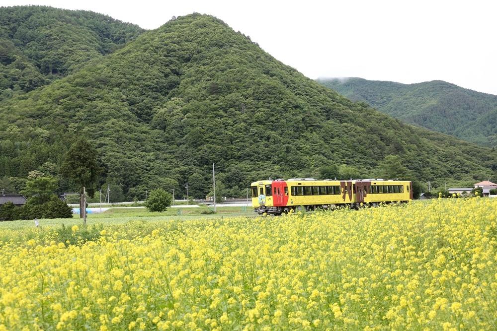 夏越の大祓_c0111229_20104130.jpg