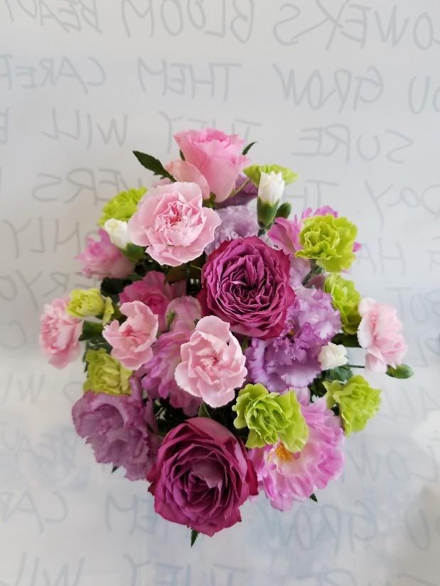 バラはヤギパープルとシーアネモネ_d0252434_14210994.jpg