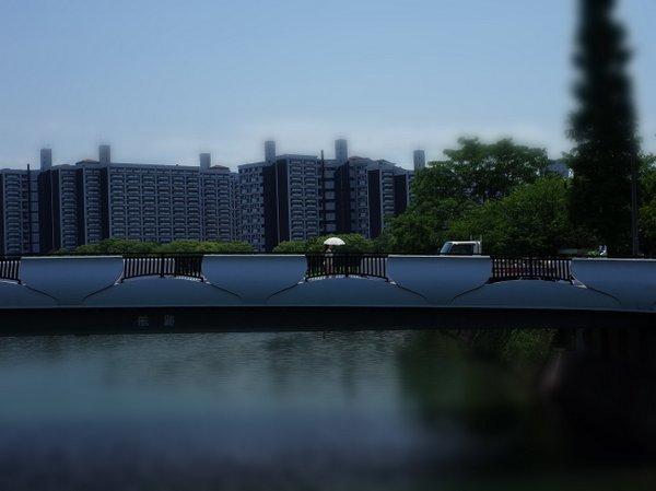 横川橋_b0190540_07085723.jpg