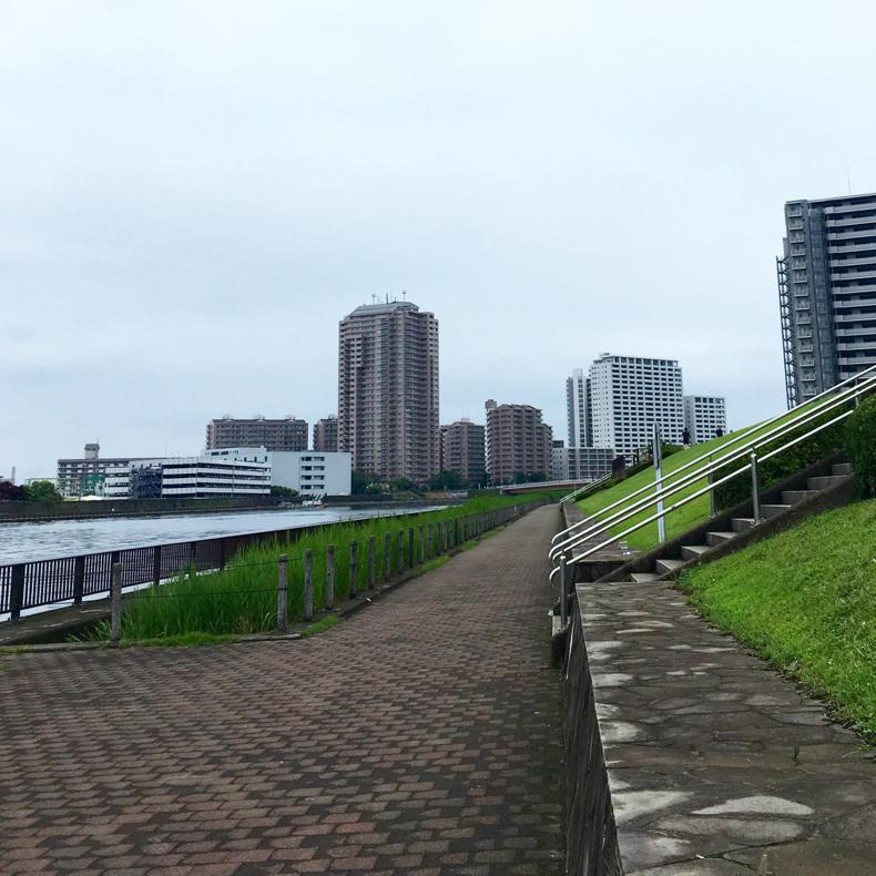 湿度高いけど風が気持ち良い川べり_c0060143_14555861.jpg