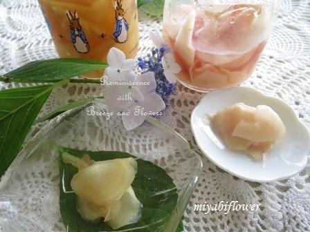 新生姜の甘酢漬け はちみつ漬け 2019_b0255144_18193704.jpg
