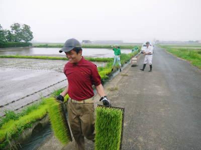 健康農園さんの令和元年の田植えの様子!菊池農業高校生さん達と共に!今年も無農薬栽培で育てます!前編_a0254656_16373547.jpg