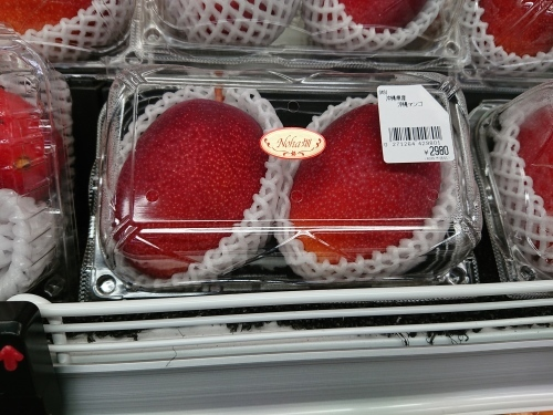 沖縄ひとりっぷ~沖縄のマンゴーも、美味しいよ!_c0100865_12552670.jpg