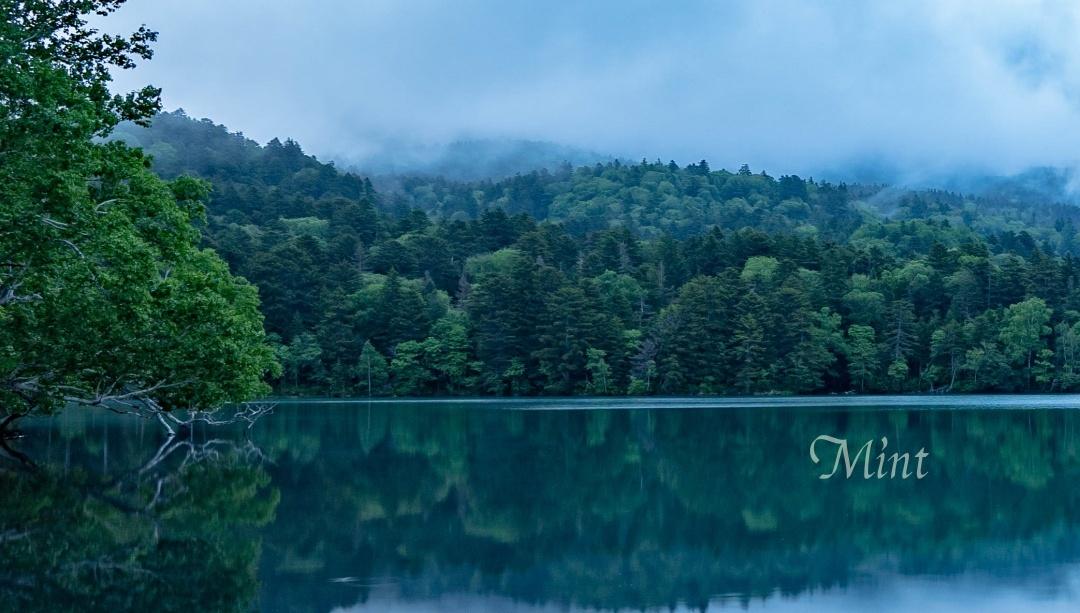 霧の朝のオンネトー_e0312066_22285675.jpg
