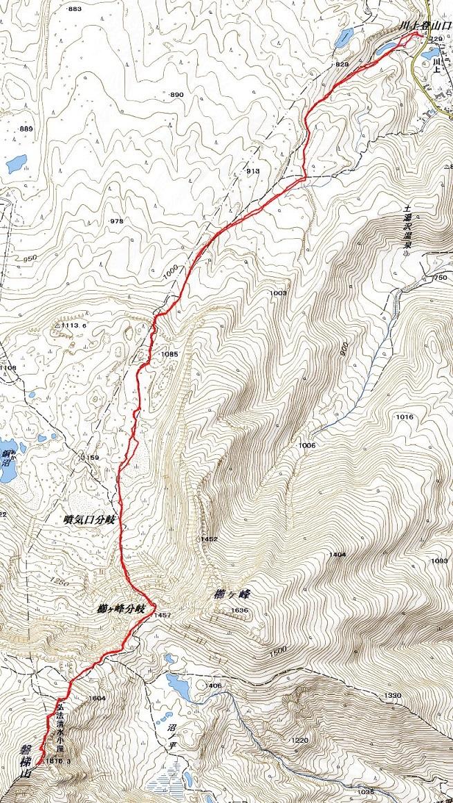 バンダイクワガタ咲く磐梯山へ ~ 2019年6月26日_f0170180_05373500.jpg