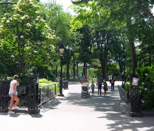 新緑の美しいワシントン・スクエア公園_b0007805_07065572.jpg