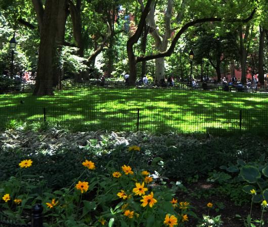 新緑の美しいワシントン・スクエア公園_b0007805_07074249.jpg
