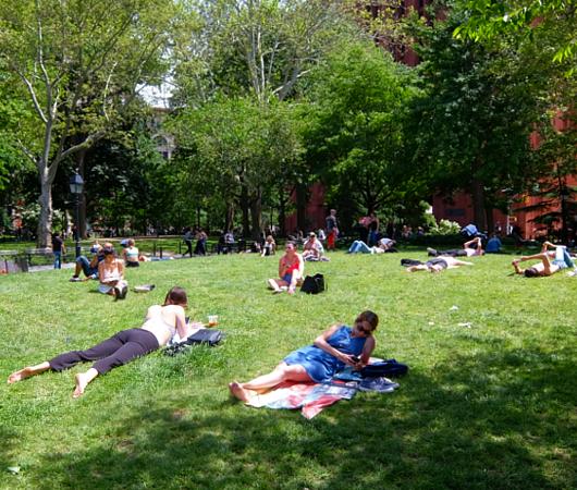 新緑の美しいワシントン・スクエア公園_b0007805_07075784.jpg
