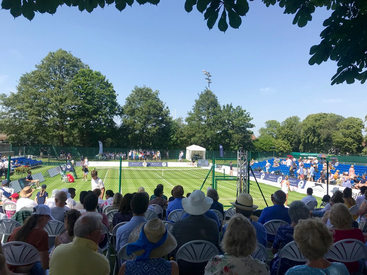 ウィンブルドンの前哨戦、ガント・チャンピオンシップでのどかにテニス観戦_e0114020_05035668.jpg