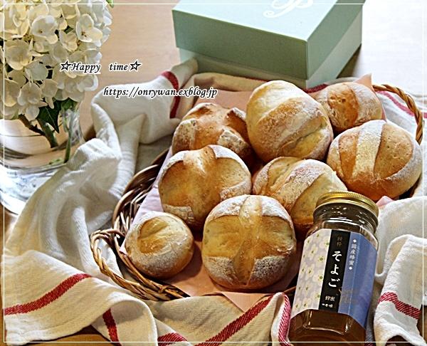 サーモンヨーグルト味噌漬け焼きのり弁当とパン焼き♪_f0348032_16173785.jpg