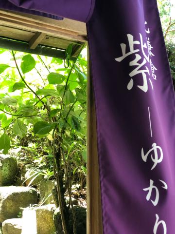 鎌倉あじさい巡り_e0230154_23390384.jpg