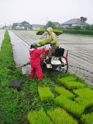 健康農園さんの令和元年の田植えの様子!菊池農業高校生さん達と共に!今年も無農薬栽培で育てます!後編_a0254656_18454485.jpg
