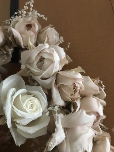 理想のバラを求めて...♪*゚_f0372557_14372536.jpeg