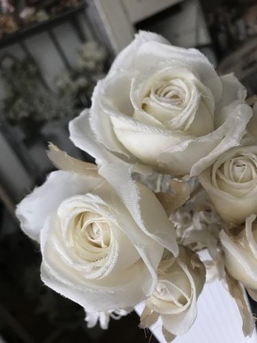 理想のバラを求めて...♪*゚_f0372557_14381116.jpeg
