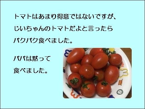 a0331562_15541071.jpg
